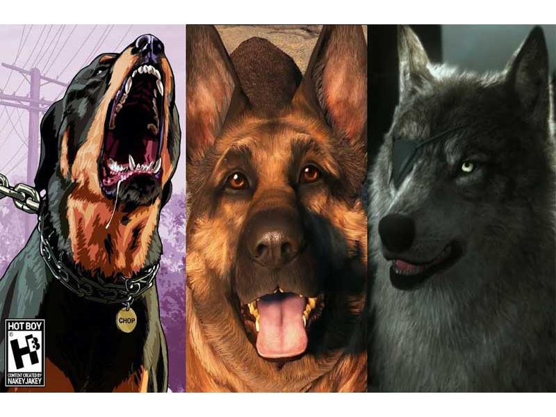 Pas - To divno stvorenje u igrama