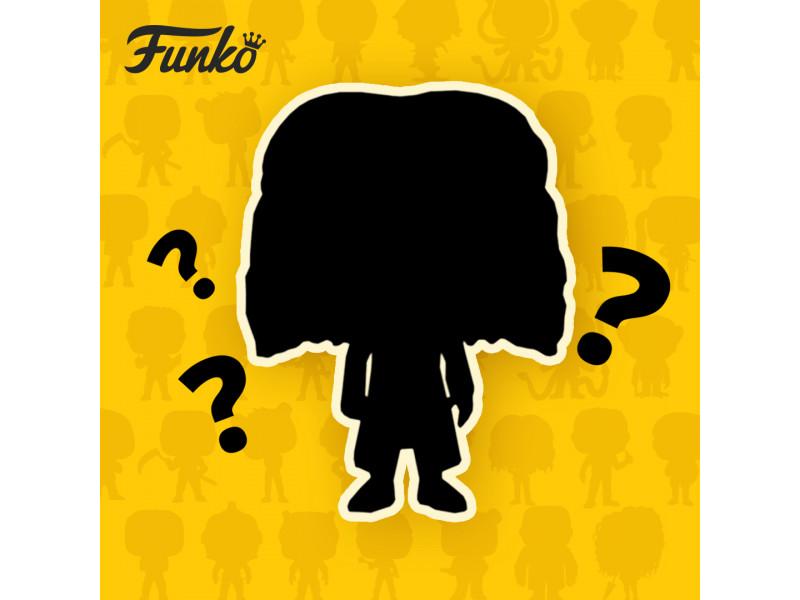 FUNKO figure - Ko je najpametniji čarobnjak?
