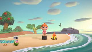 Switch Animal Crossing - New Horizons